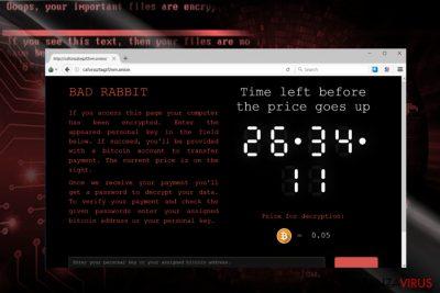 Uno screenshot del sito per i pagamenti di BadRabbit