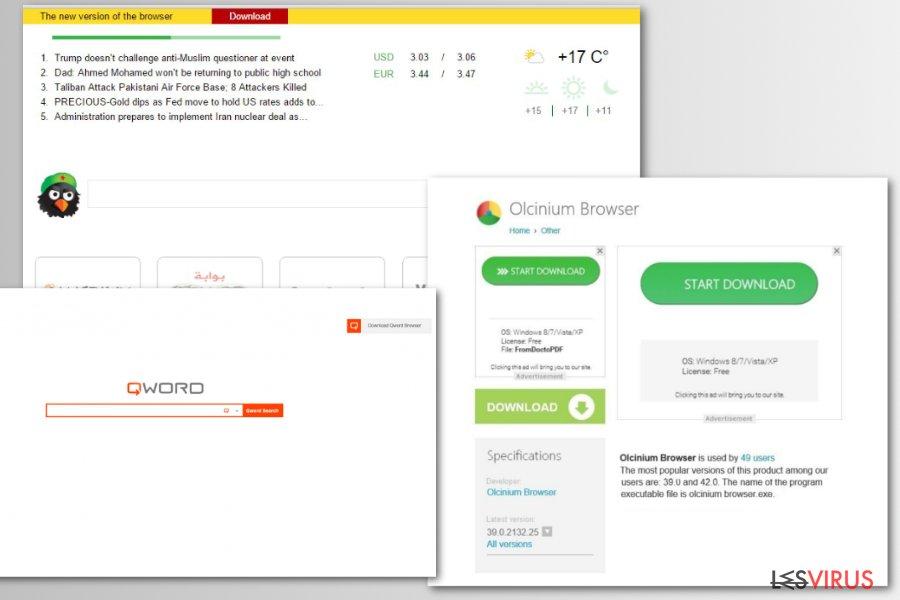 Il browser fake Chromium