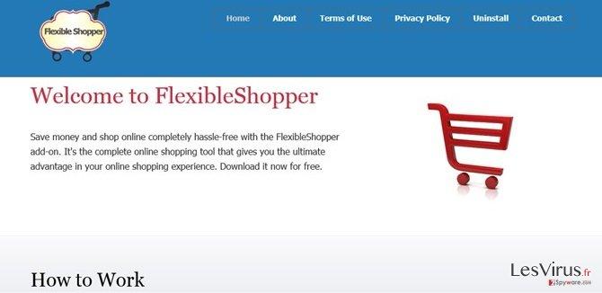 instantanea di Le pubblicità di FlexibleShopper