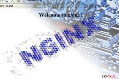 Un'immagine del malware Nginx
