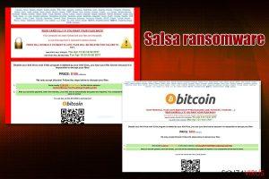 Il virus ransomware Salsa