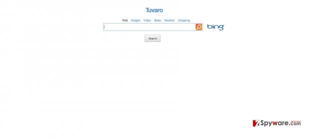instantanea di SearchNet