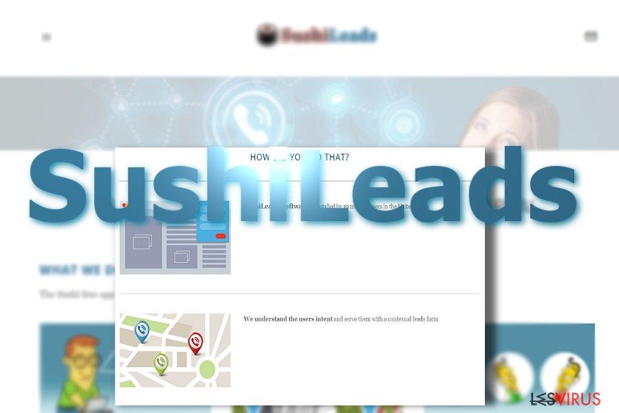 instantanea di Gli annunci pubblicitari di SushiLeads