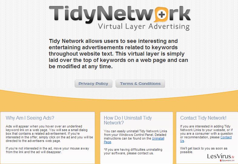 instantanea di TidyNetwork.com