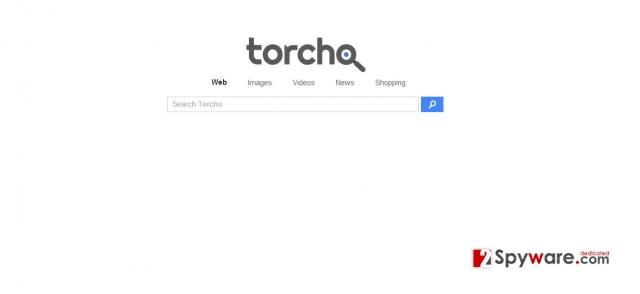 instantanea di Il virus Torcho Web