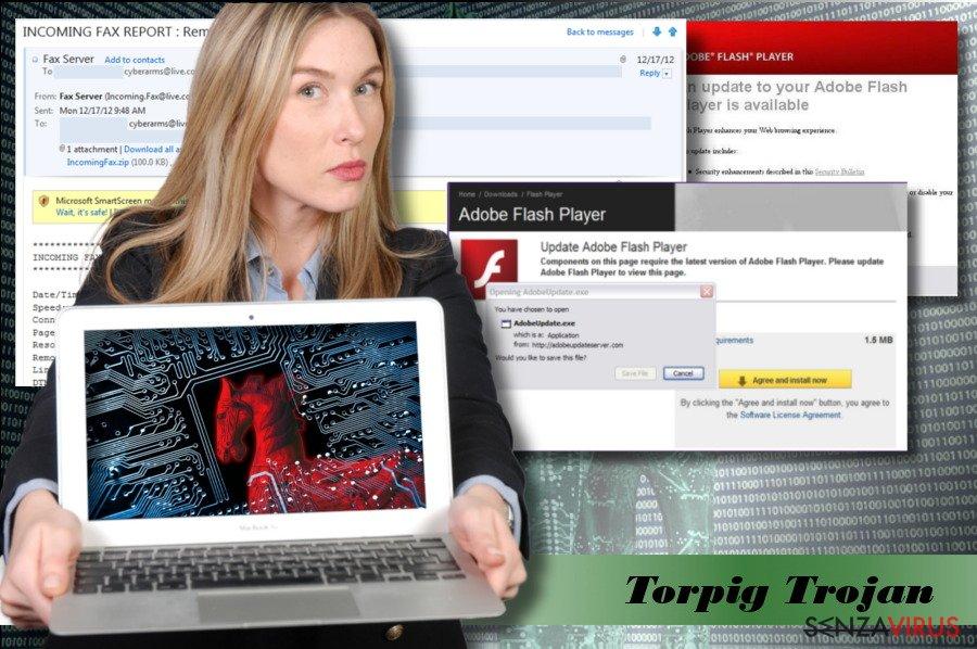 Un'immagine del virus Torpig
