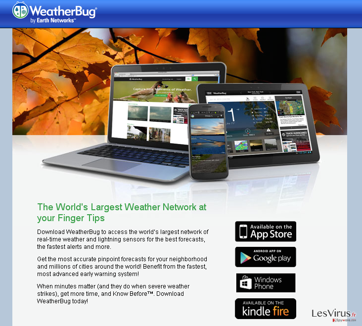 instantanea di Annunci di Bug Weather