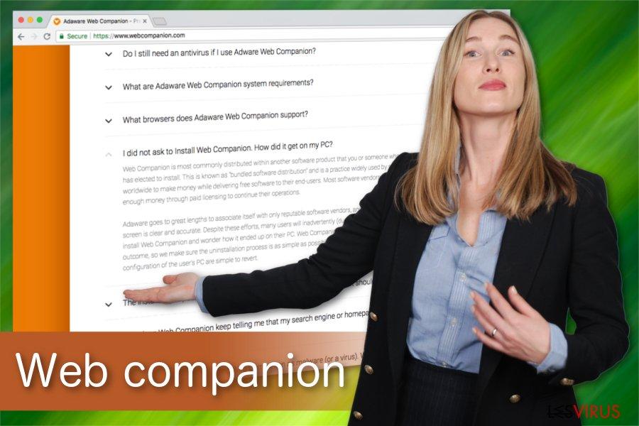Illustrazione Web Companion