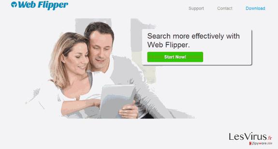 instantanea di Le pubblicità Web Flipper