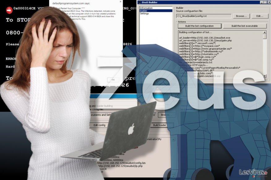 Una immagine del virus Zeus