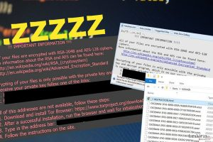 Il virus estensione file .zzzzz